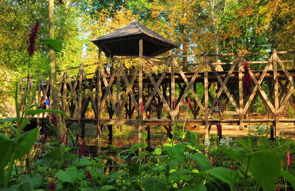 Clos luc le pont double trav e de leonard devinci - Pont leonard de vinci ...