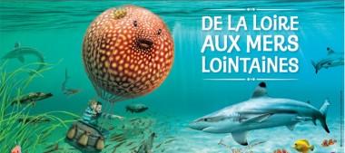 Aquarium de Touraine – Animations des Vacances de la Toussaint