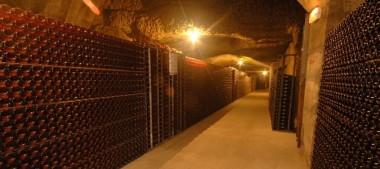 La Maison Louis de Grenelle, une cave unique à Saumur