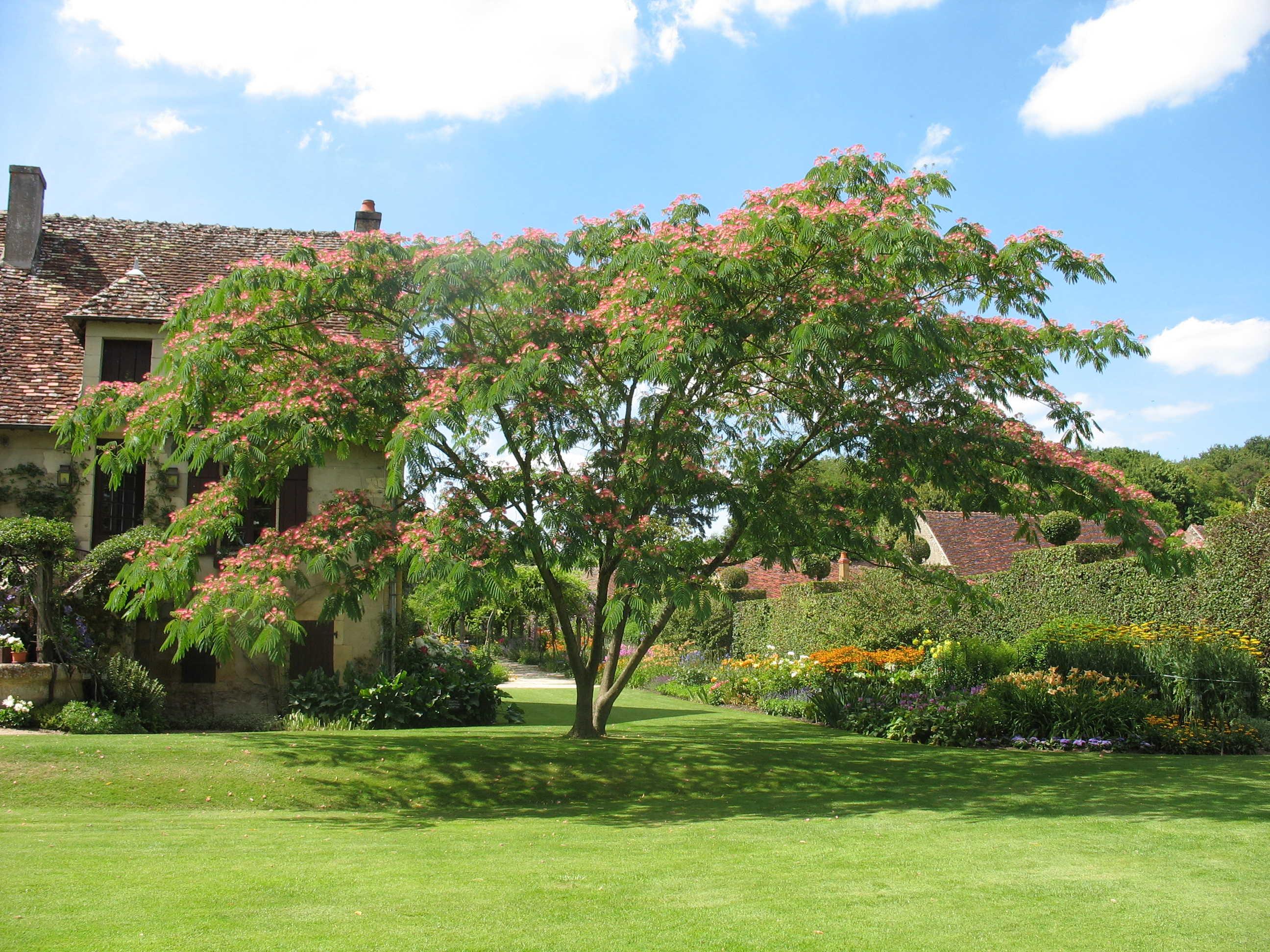 Parc floral d 39 apremont sur allier un jardin remarquable for Jardin remarquable