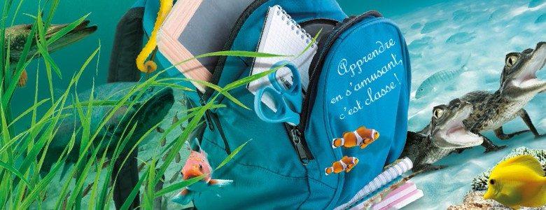 sortie scolaire et p 233 dagogique au grand aquarium de touraine val de loire