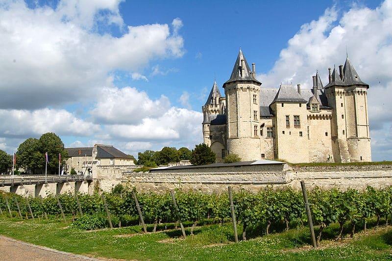 vignes-chateau-chinon-lachiquita-flickr-bysa20