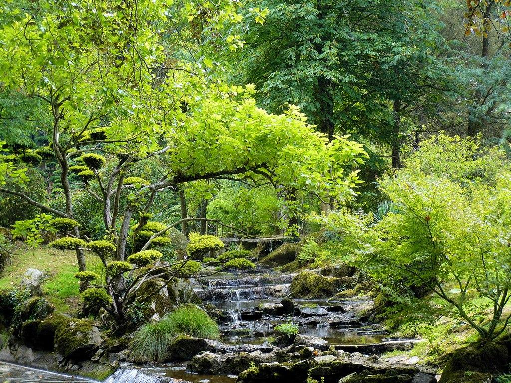 Le parc oriental de maul vrier un jardin remarquable for Jardin remarquable