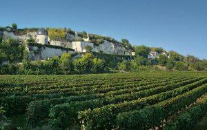 Turquant, Anjou