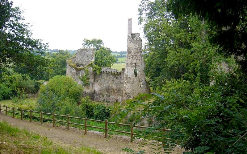 ruines-chateau-turmeliere-lire-selbymay