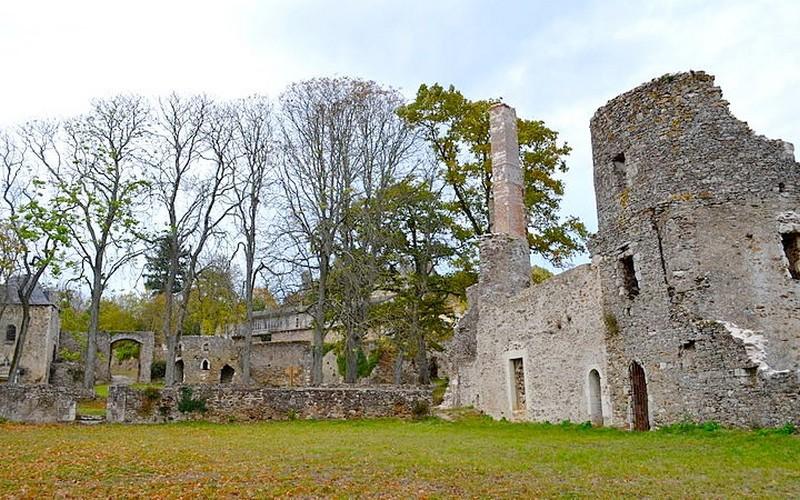 vieu-chateau-turmeliere-lire-selbymay