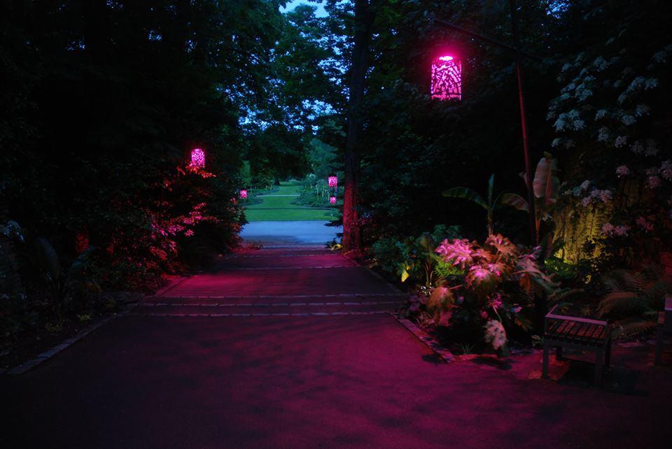 Parc-floral-orléans-la-source-nocturne