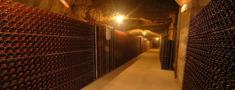 couverture-Cave de Grenelle-Copyright C.Gagneux