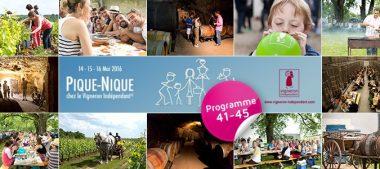 Pique-nique chez le vigneron : le programme en Loir-et-Cher et Loiret