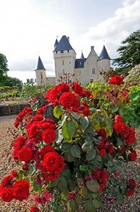 Roses des jardins du Rivau