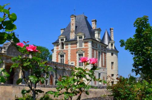 chateau-selles-sur-cher-©CDT41-nbrunet