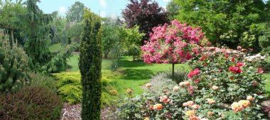 Promenade à Saint Eloi sur Rémeron à l'Arboretum Les Feuilles Fleuries