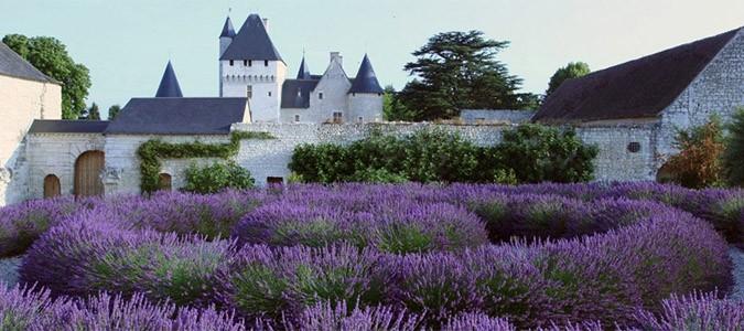 jardins-medievaux-centr-val-de-loire-le-rivau