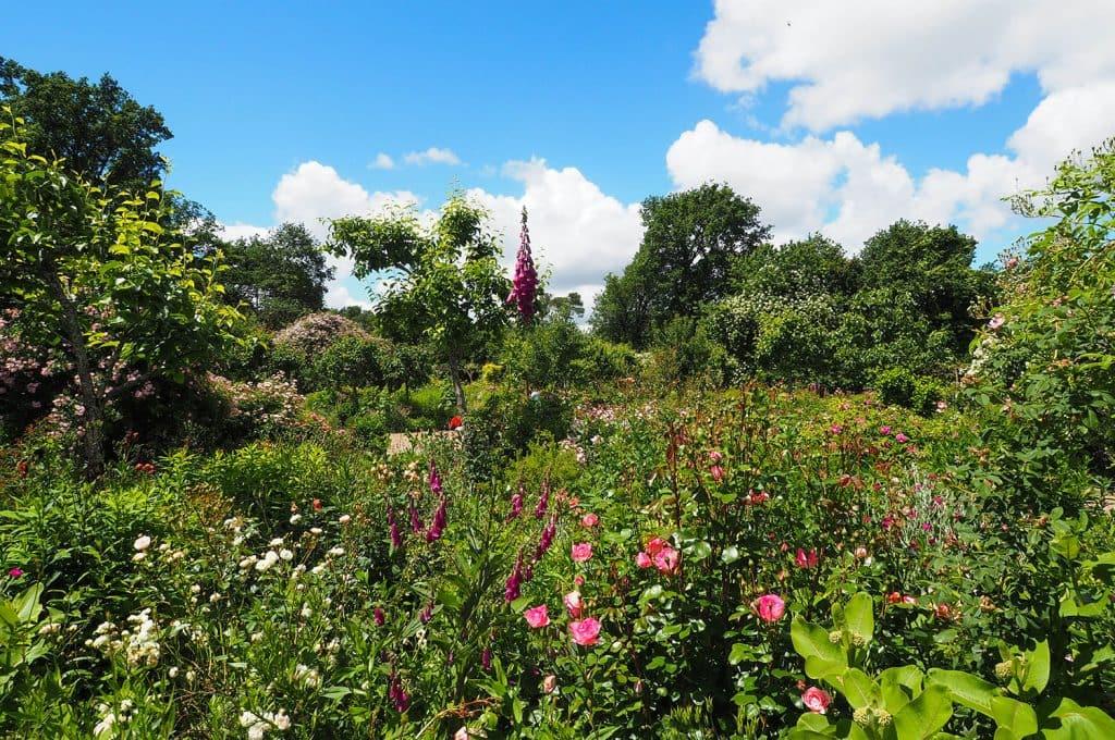 jardins-secrets-cher-jardins-drulon-berry-AD2T-M-PIERSO