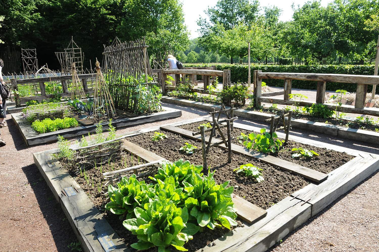Jardins secrets du cher notre dame d 39 orsan val de loire for Jardin renaissance