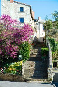 ville-montreuil-bellay-escalier-st-pierre