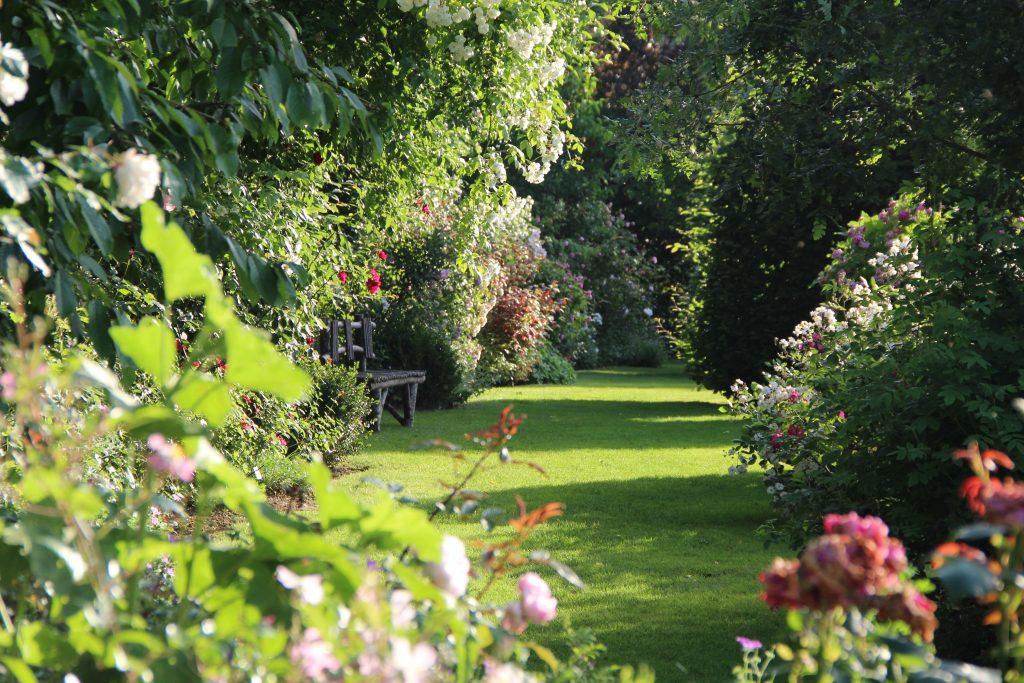 A meung sur loire deux jardins remarquables val de loire for Jardin remarquable 2015