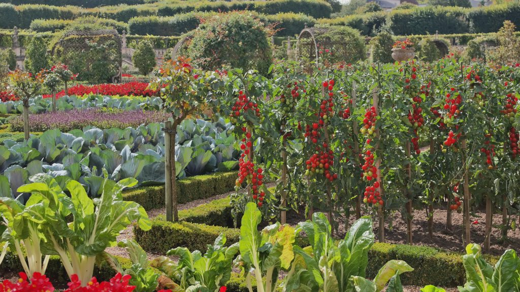 L 39 exposition villandry au c ur des jardins de france for Jardins de france a visiter