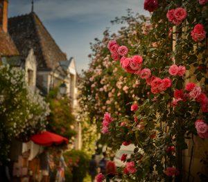 Chédigny, Village Jardin - OT Loche Touraine Côté Sud - My Loire Valley