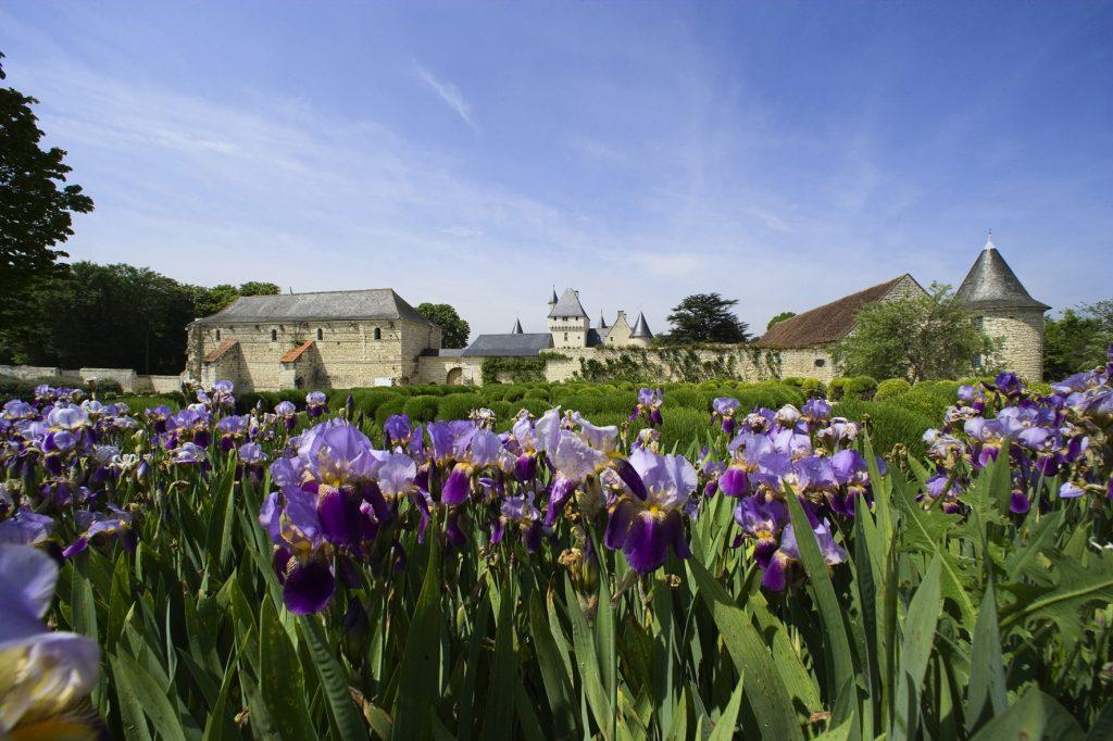 iris-chateau-rivau