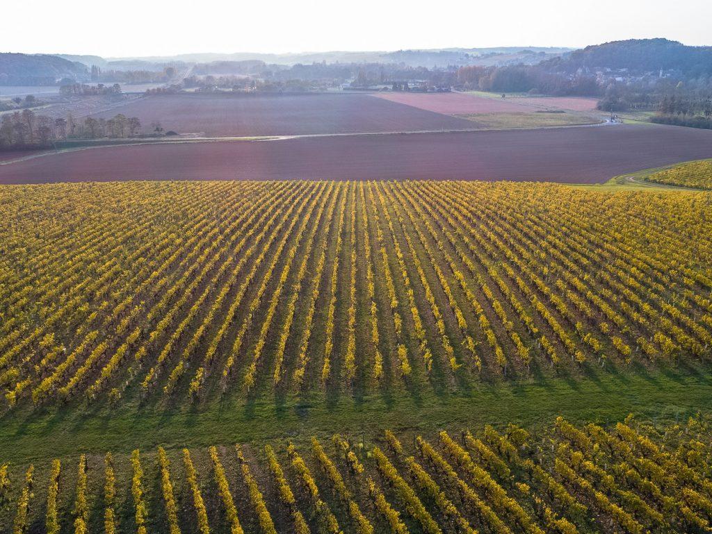vue-aerienne-vignobles-valmer-©Charly'sDrone