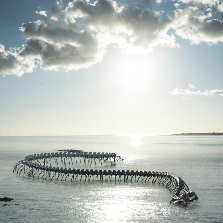 serpent-des-mers-estuaire-nantes©franck tomps