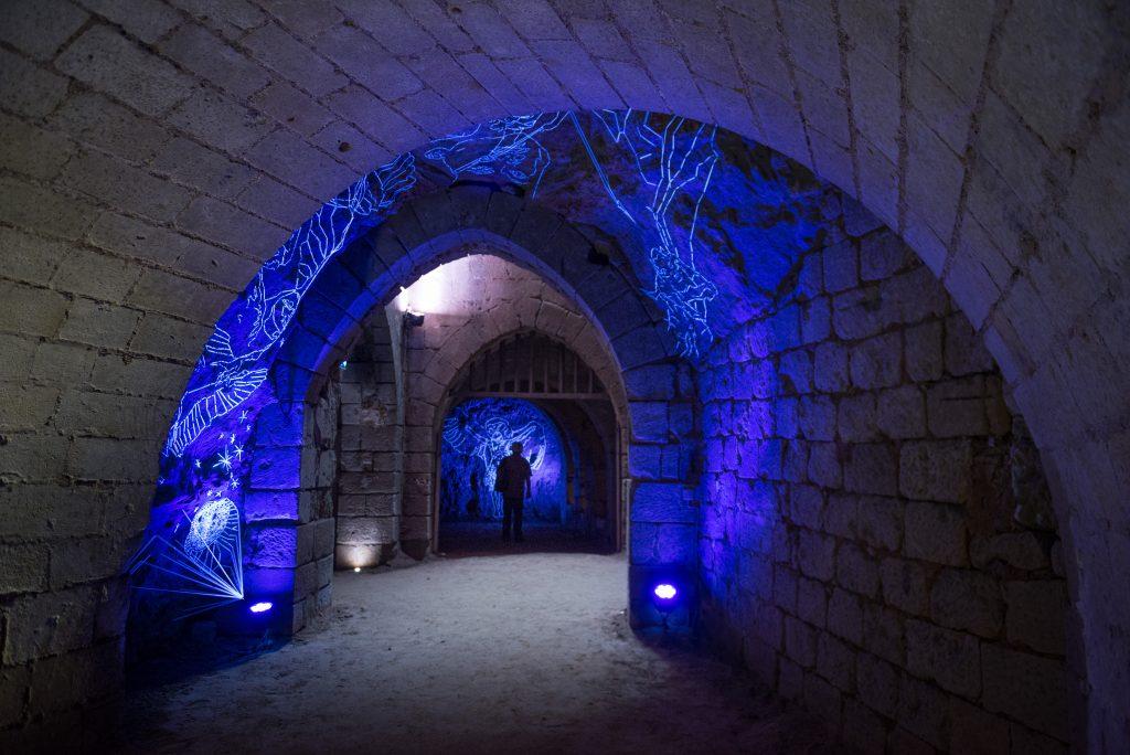 La Crypte des effraies - Abbaye royale de Fontevraud
