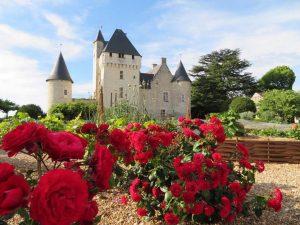 chateau du rivau et roses