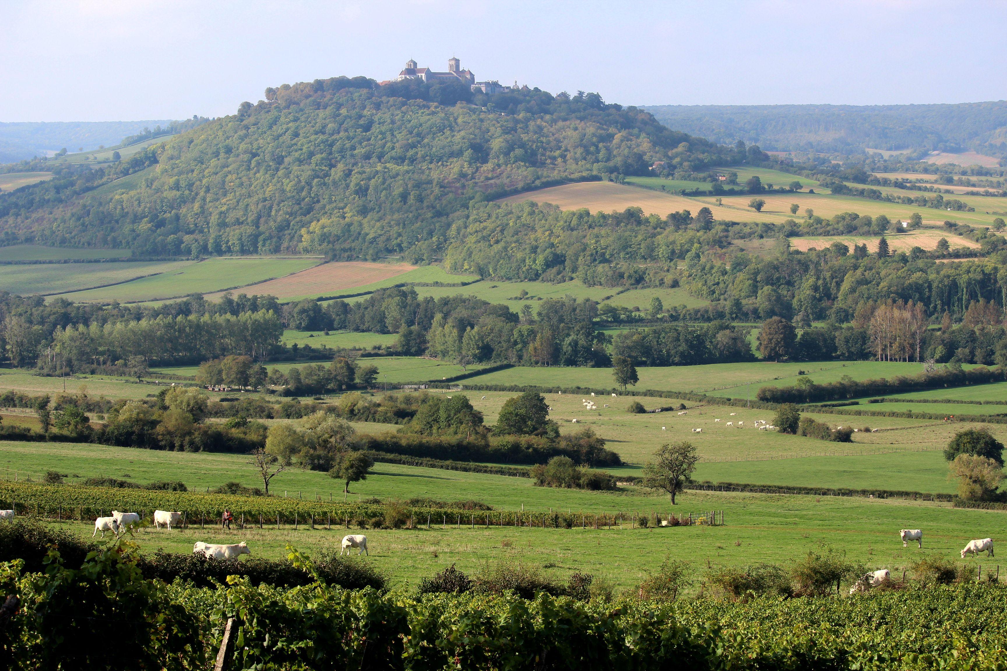 La Colline de Vézelay, côté Morvan