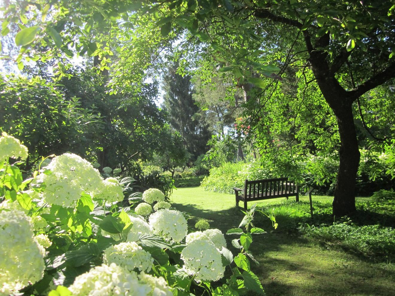 Que Mettre Avec Des Bruyeres arboretum des grandes bruyères : un jardin merveilleux