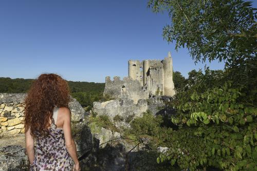 Vue sur le château - Angles sur l'Anglin