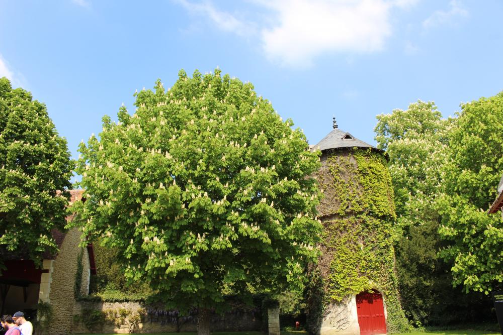 moulin ferme chenonceau©Boussole Voyageuse