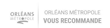 logo orleans metropole