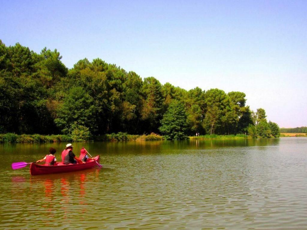 rille-lac-nature-aout-