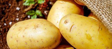 Galette berrichonne ou pâté aux pommes de terre