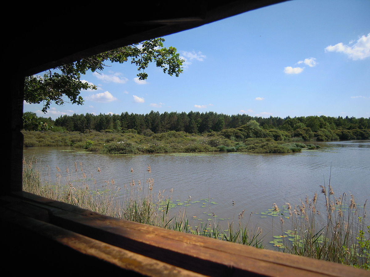 étang de bellebouche