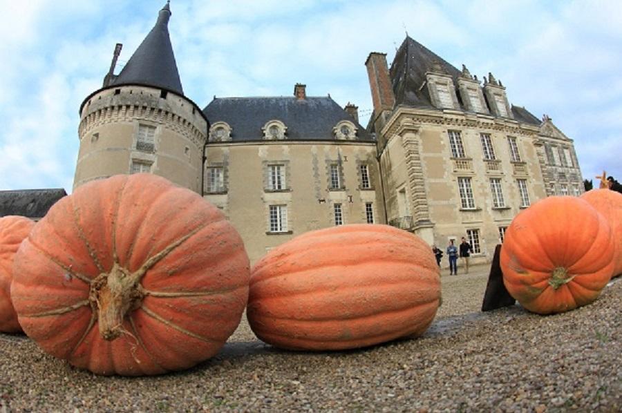 Citrouilles Halloween dans les jardins du château d'Azay-le-Ferron