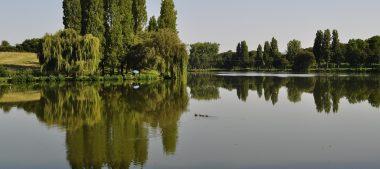 Une évasion nature à Saint-Martin d'Auxigny