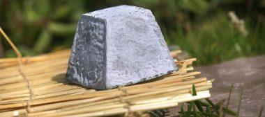 Le valençay, fromage de chèvre du Berry
