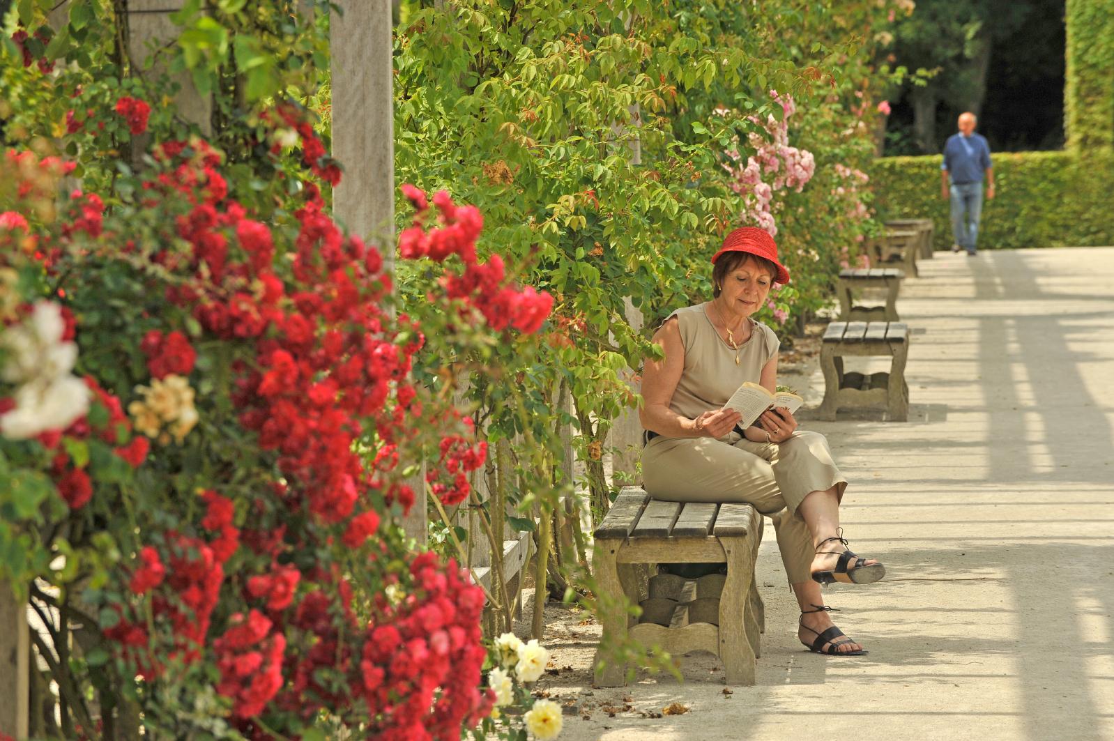 Jardin roseraie du château de chamerolles route de la rose Loiret