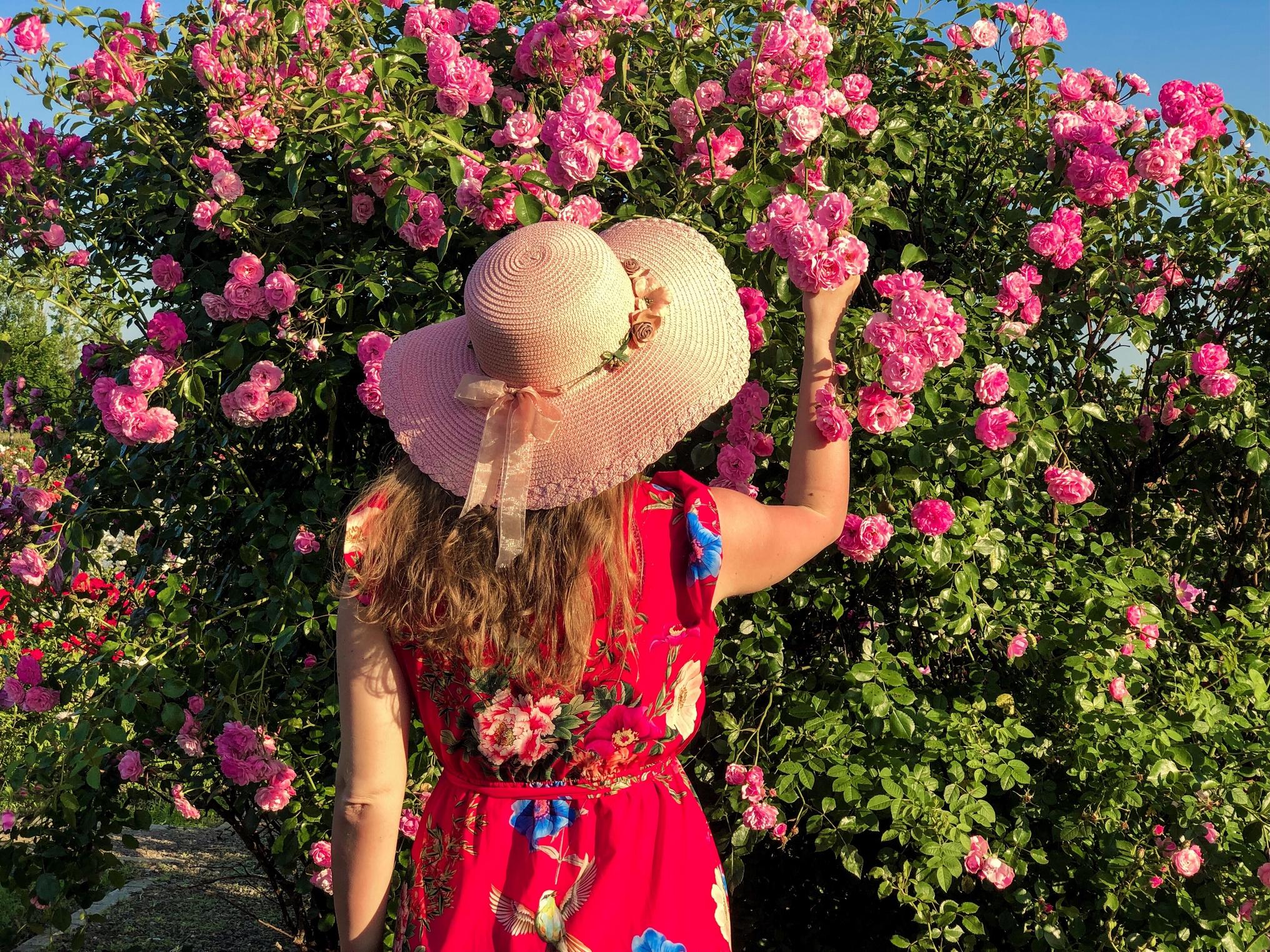 route de la rose loiret
