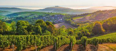 Le portrait du mois : Justine Kruk, des Vins du Centre-Loire