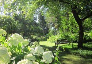 Arboretum Hortensia