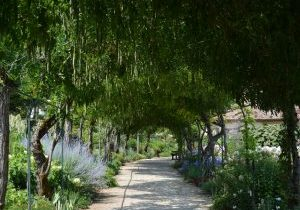 Apremont-sur-Allier Jardin