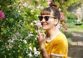 jardin roserais du château de la buissière route de la rose loiret
